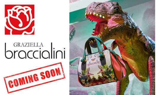 BRACCIALINI 2019 fall-winter collection